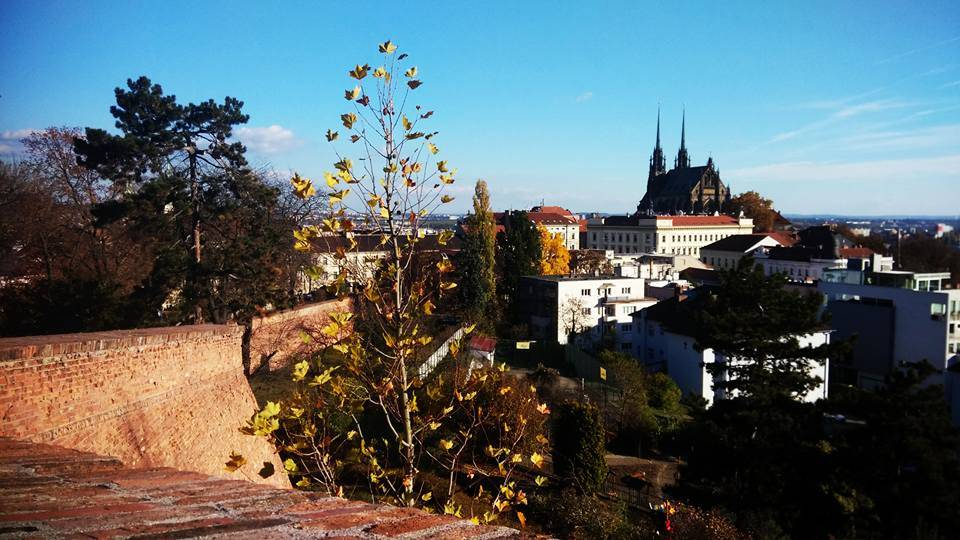things to do in brno (1)