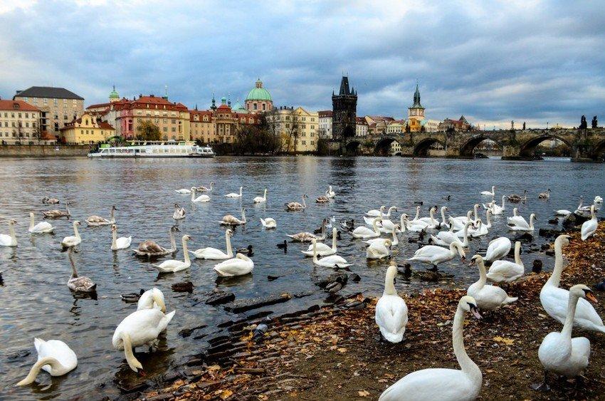 Best views of Prague at the Charles bridge