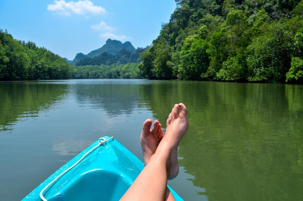 top things to do in langkawi mangroves