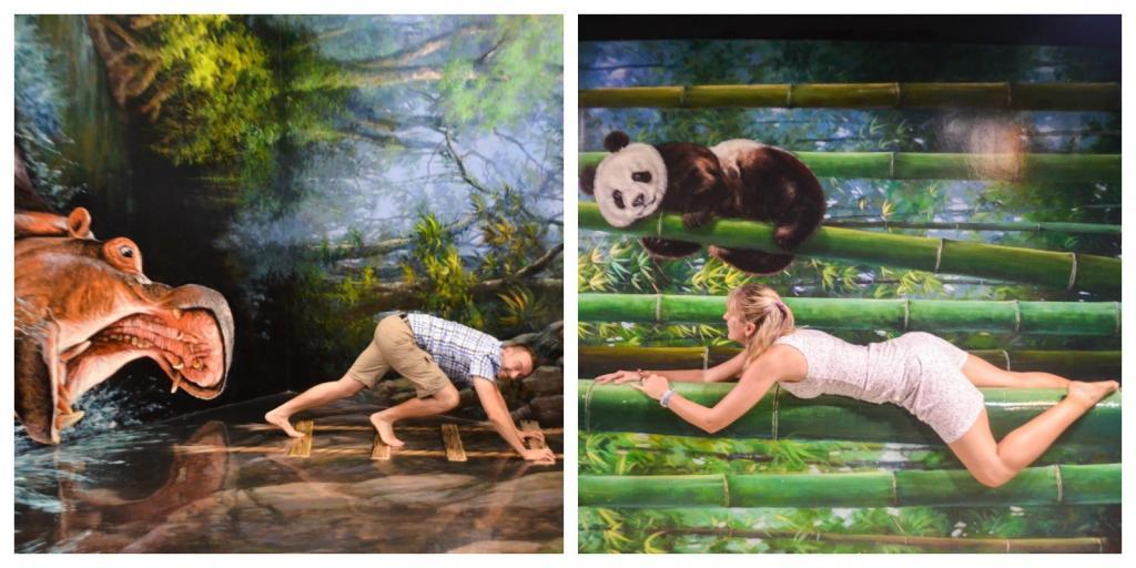 what to see in langkawi 3d museum